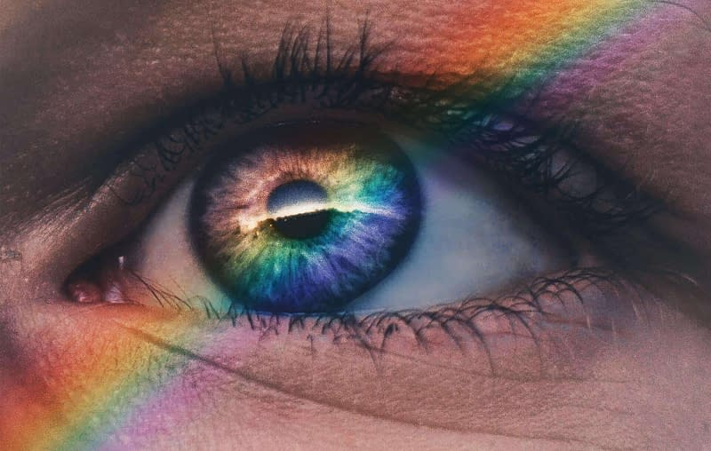 pupil pupillary pathway iris prism color through pupil
